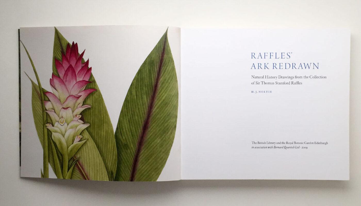 Raffles-spread-1